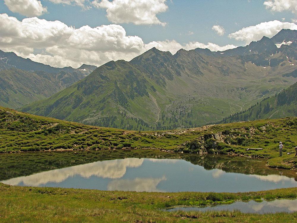 Lebensraum für die Alpen-Mosaikjungfer